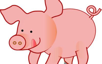 Three Little Pigs – SRP Week 7