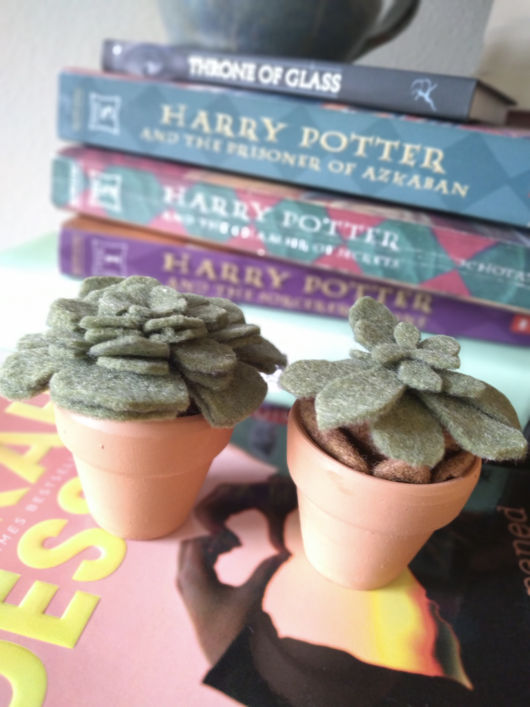 Up close image of two felt succulents inside of terra cotta pots with a background stack of books.
