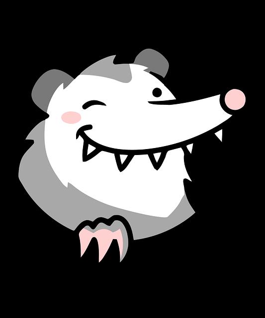 Illustration of an opossum