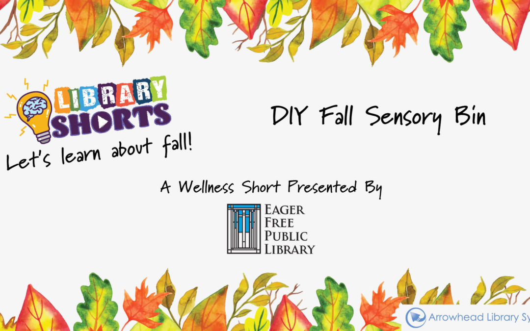 Wellness & Mindfulness: DIY Fall Sensory Bin